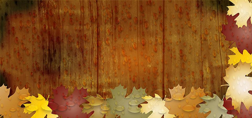 Деревья картинки с листочками и названиями